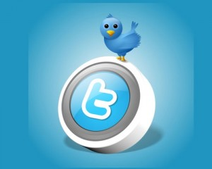 follow-on-twitter